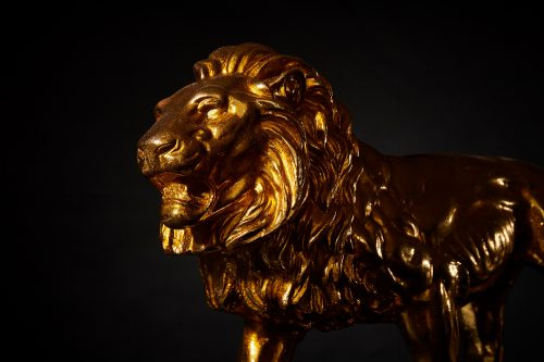 Löwe Gold 7