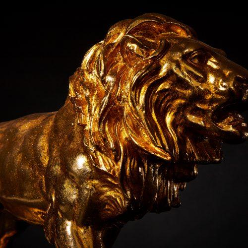 Löwe Gold 6