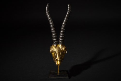 Steinbock Gold 1