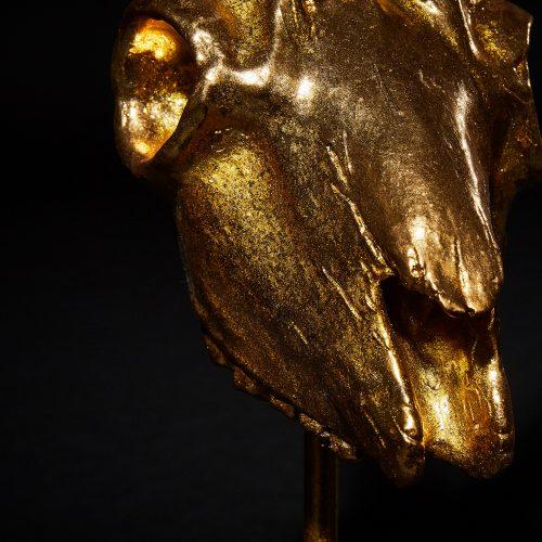Steinbock Gold 4