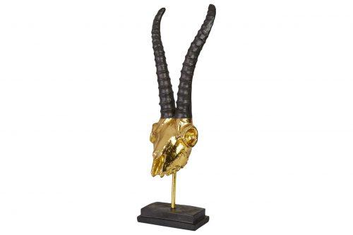 Steinbock Gold 8